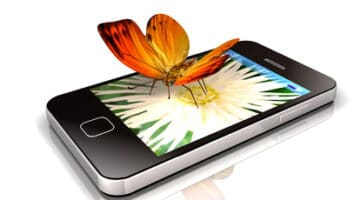 smartphone and butterfly