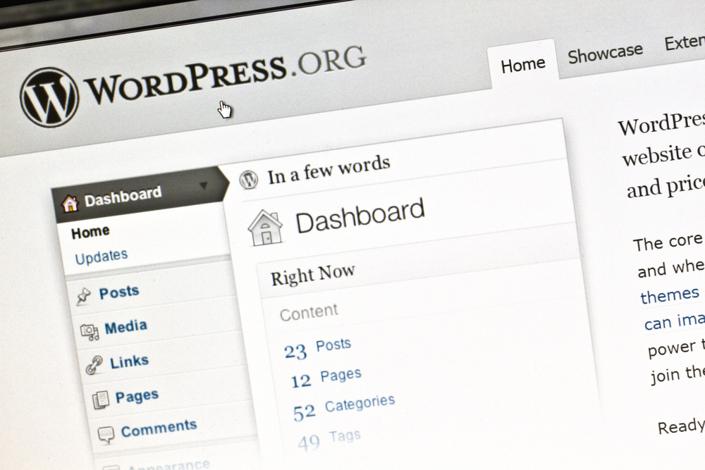 How to add SEO page title in WordPress